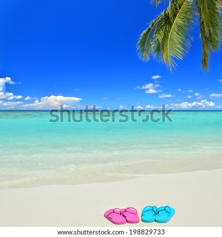 Colored flip-flops on the tropical beach -- Summer holidays concept  - stock photo