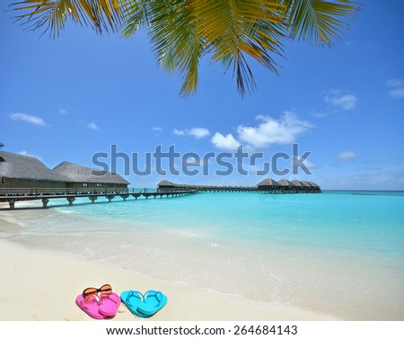 Colored slippers and sunglasses at the tropical beach -- Tropical beach vacation and travel concept  - stock photo