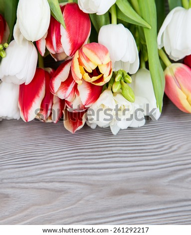 colored spring flower for mother day - stock photo