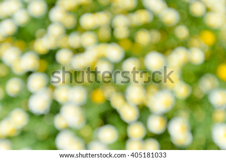 Colorful abstract spring background with bokeh effects. Defocused flower field - stock photo