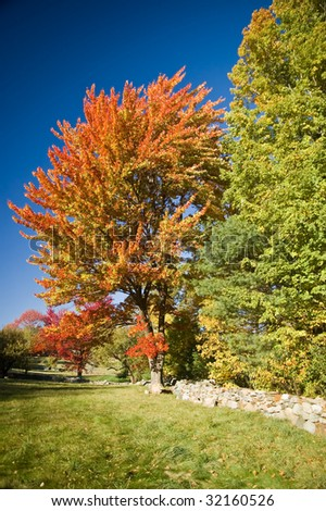 Colorful autumn foliage in a rural scene in New England - stock photo