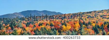 Colorful Autumn foliage in White Mountain, New Hampshire. - stock photo