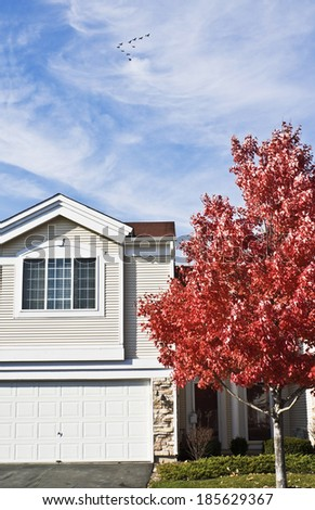 Colorful Autumn in Suburbs - Chicagoland. - stock photo