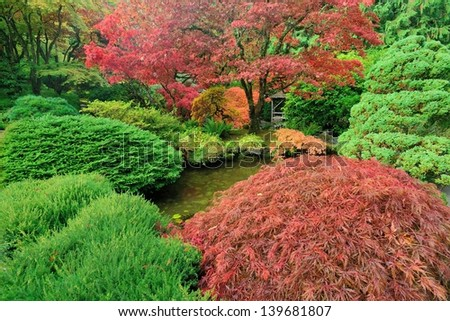 colorful autumn japanese maples in national historical site Butchart Gardens, Vancouver island, British Columbia, Canada - stock photo