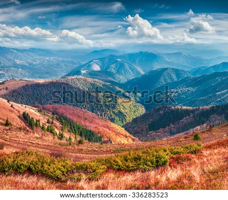 Colorful autumn landscape in the mountains. instagram toning. - stock photo