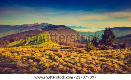 Colorful autumn landscape in the mountains.Snowy top of the and green trees. Filtered image:cross processed vintage effect.  - stock photo