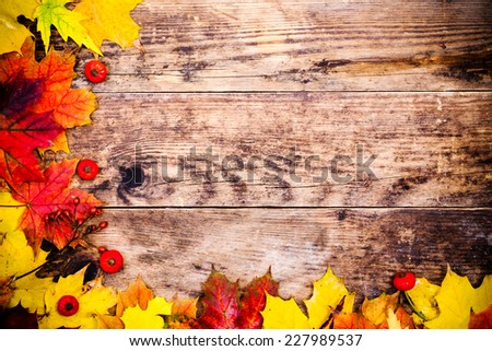 Colorful autumn leaves and wood background. - stock photo