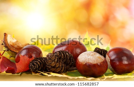 colorful autumn leaves, chestnuts and pine cones with bokeh - stock photo