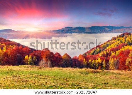 Colorful autumn morning in the Carpathian mountains. Sokilsky ridge, Ukraine, Europe. - stock photo