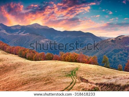 Colorful autumn sunset in the Carpathian mountains. Tarantyn ridge, Ukraine, Europe. - stock photo