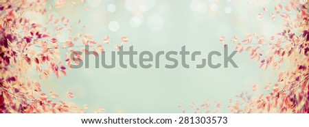 colorful autumn tree branch with red leaves on light blue bokeh background, banner for website - stock photo