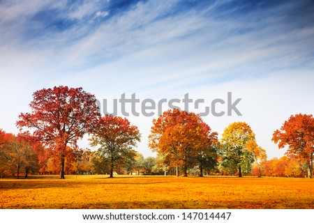Colorful autumn trees landscape fall season - stock photo