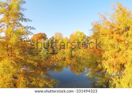 Colorful autumnal landscape - stock photo