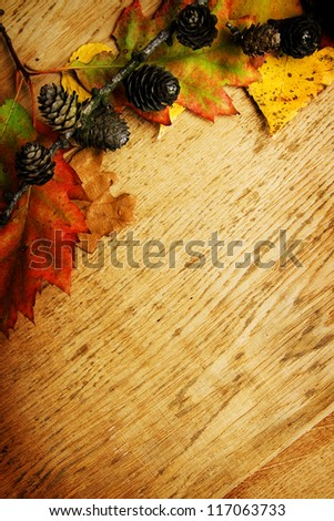 Colorful autumnal leaves lying on a wooden board - stock photo