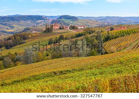 Colorful autumnal vineyards on the hills of Piedmont, Northern Italy. - stock photo