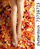 Colorful background made of beautiful female legs and petals - stock photo