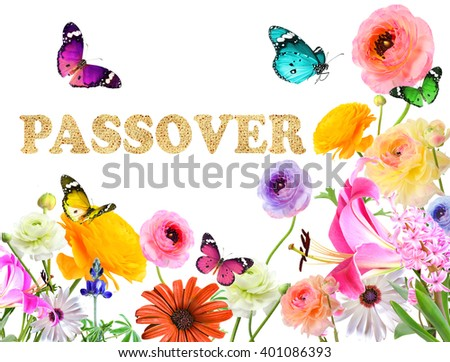 Colorful beautiful flowers,butterflies and word PASSOVER made of Matzoh (matzah or matzo) traditional Jewish dry bread for Passover holiday.Spring nature holiday abstract  background.Isolated on white - stock photo