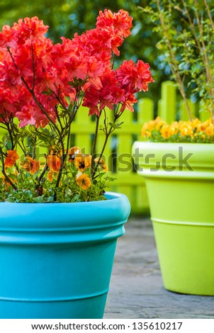 Colorful blue and green flower pots filled with flowers - stock photo