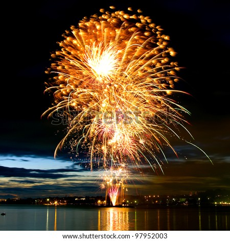 Colorful bright firework in a night sky - stock photo