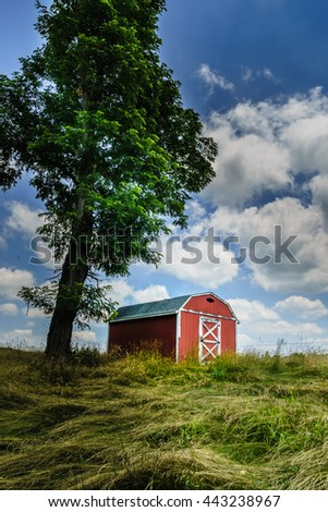 Colorful bright red barn under a big tree in a golden field - stock photo