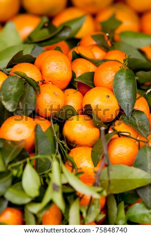 Colorful Display of Tangerines in a Street Market in Cambodia - stock photo