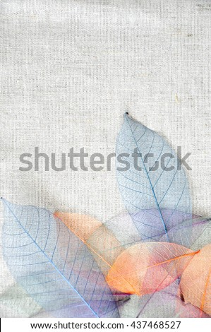 Colorful dried leaves on fabric background - stock photo