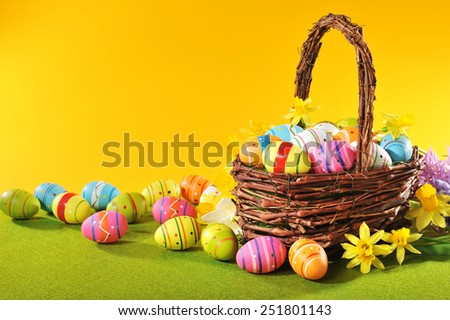 colorful easter eggs and narcissus in easter nest  - stock photo