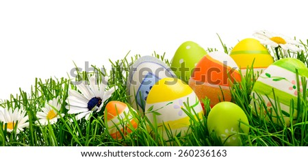 Colorful Easter eggs and spring flowers on fresh grass isolated on pure white, wide format studio shot - stock photo