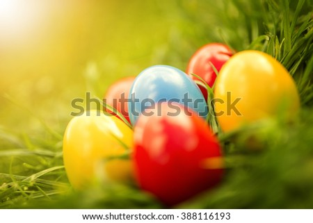 Colorful easter eggs.Easter eggs on grass. - stock photo