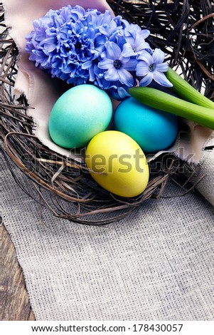 Colorful easter eggs with hyacinth in a nest on wooden background - stock photo
