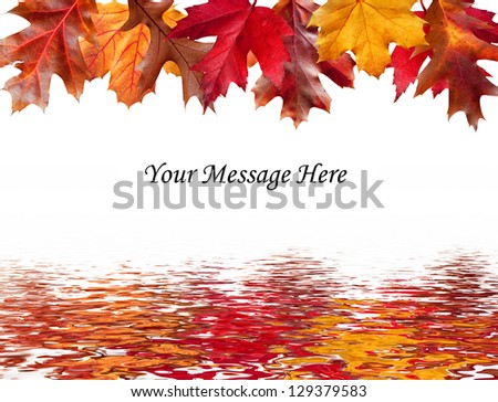 Colorful Fall leaves above and a water reflection below a message area - stock photo