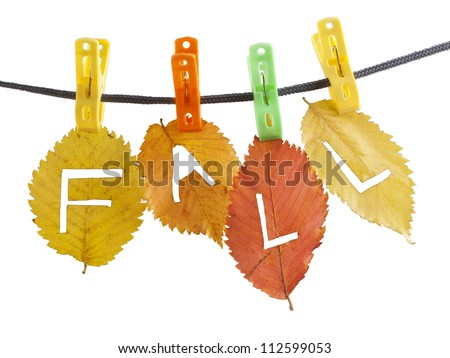 Colorful fall leaves hanged on clothesline with clips carved with a knife letters - F a l l  on white background - stock photo