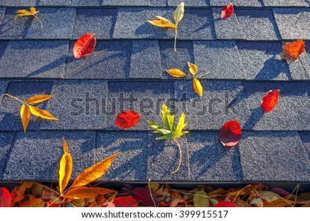 Colorful fall leaves in the gutter and on a roof - stock photo