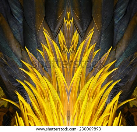 Colorful feathers, chicken feathers background texture - stock photo