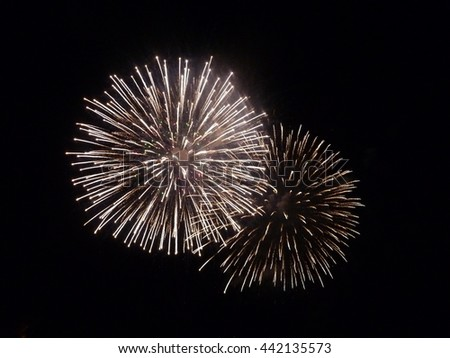 Colorful firework for the New Year celebration - stock photo