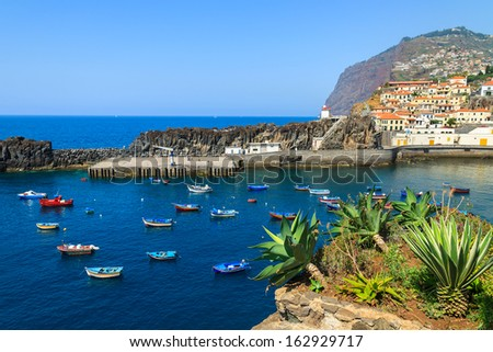 Colorful fishing boats on sea water in Camara de Lobos port with agave plants in foreground, Madeira island - stock photo