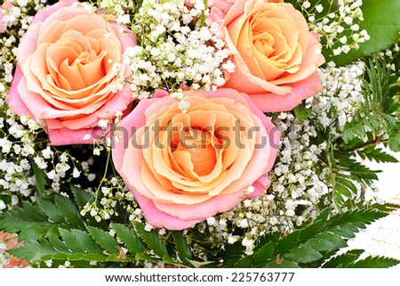 Colorful Flowers Bouquet Isolated on White Background. - stock photo