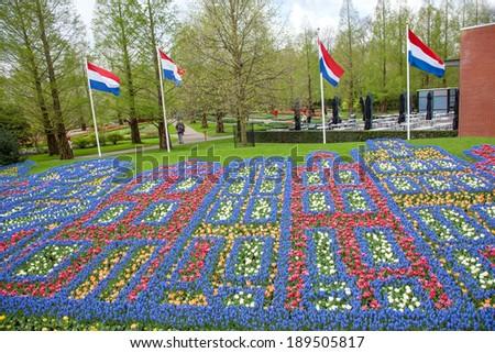 Colorful flowers pattern in dutch spring garden Keukenhof, Lisse, Netherlands - stock photo