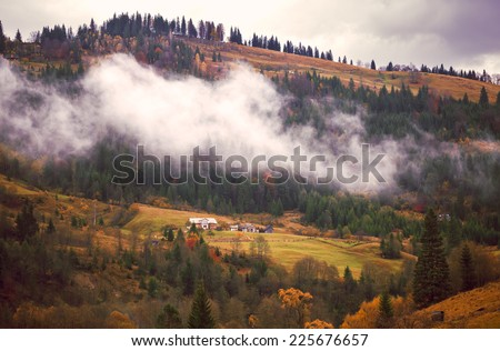 Colorful fluffy autumn forest in Ukrainian Carpathians. - stock photo