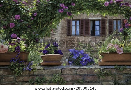 Colorful Garden in the Medieval Village of Buonconvento, Italy - stock photo