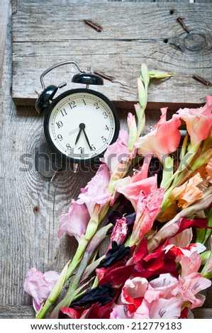 Colorful gladiolus and alarm clock on a wooden background - stock photo