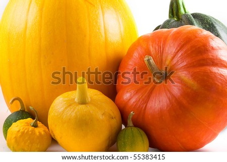 Colorful gourds isolated on a white background - stock photo