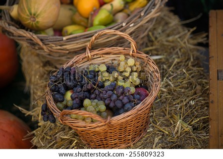 Colorful grape in basket with apples and pumpkins on the hay background - stock photo
