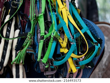 Colorful horse reins sold in a market shop  - stock photo