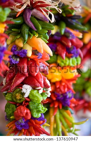 colorful hot chilli peppers - stock photo