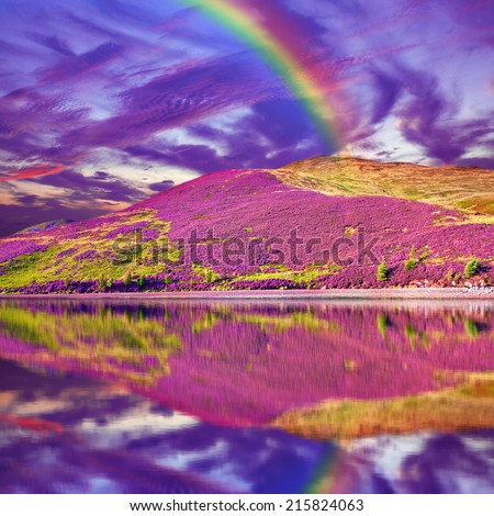 Colorful landscape scenery of rainbow over hill slope covered by purple heather flowers and dramatic cloudy sky reflected in the water. Pentland hills, Scotland - stock photo