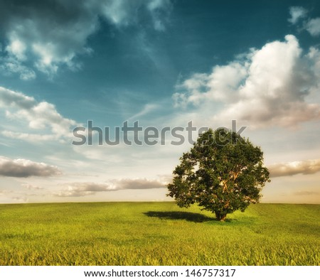 colorful landscape with field and tree - stock photo