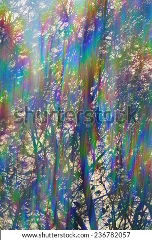 Colorful light streaks through pine tree branches abstract iridescent reflections. Vintage prism filter lens flare. - stock photo