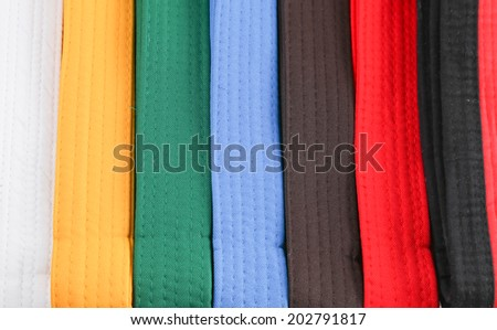 colorful martial art belt - stock photo