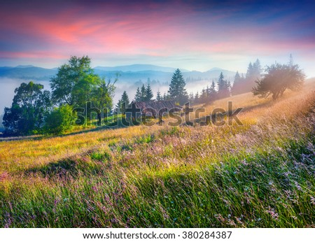 Colorful morning scene in the mountains with rolling hills and valleys in golden morning light. Foggy sunrise in Carpathians, Kvasy village location, Ukraine, Europe.  - stock photo